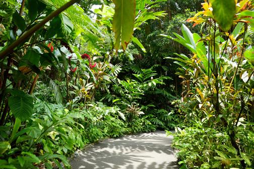 Sustainable Hawaii
