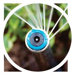 Organic Solutions Irrigation